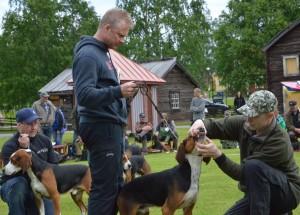 Domaren kollar bettet på Karsk, handler Leif Aronsson