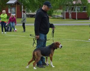 Fin. Svartlyckans Attack-10 och Peter Knapp