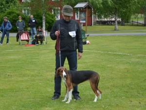 Fin. Ulvfsveåsens Saga-12 och Anders Gustafsson