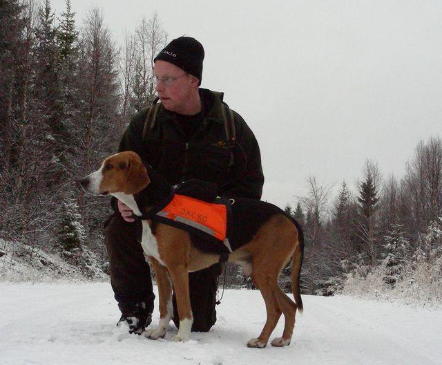 Ham. Östansjöns Jacko -05 och Anders Olofsson (Foto Göran Blixt)