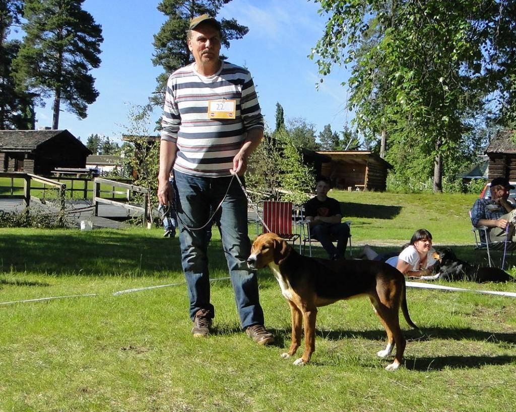 Hamiltonstövare Azzi-11, E Jkl CK, och Åke Johansson