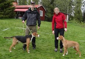 Ham. Trittbergets Pöjk-11, E Chkl 1 Chkk CK 1 Bhkl BIR BIS-1 med Anton Nilsson och Gotl. Astuens Kaip-14, E Junk 1 Junkk CK 1 Bhkl BIR med Michaela Jansson