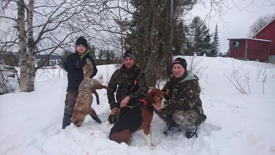 Bild med Simon Olausson och söndagens räv.Samt skytten Markus Zackrisson, Finnstövarn och Kela Sivertsson längst till höger.